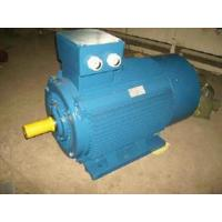 China Ie2 (CE) Y2 Three Phase Electric Motor (Y2-315S-4) on sale