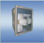 Quality 120W Electrodeless Flood Light (WY2520) for sale