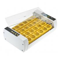 Quality Durable Operation Simple Poultry Egg Incubator , Fully Automatic Egg Incubator for sale