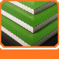 Quality Exterior Plastic Shuttering Ply Board , 8x4 Plastic Plywood Sheets For Wall / Roof for sale