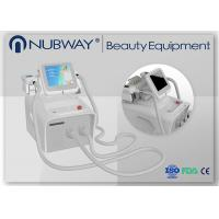 China 4 Handles Cryolipolysis Love Handles/Crypolysis Fat Dissolving Machine on sale