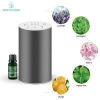 Quality 2000mAh rechargeable aroma nebulizer Aroma Essence Car Diffuser for sale