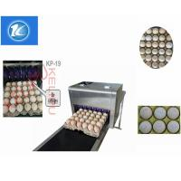 Quality High Output Egg Inkjet Coding Printer Automatically Updated For Time Characters for sale