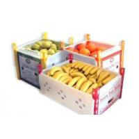 Quality pp foldable corrugated plastic hollow box/pp hollow box for storage and turnover for sale