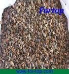 Quality Buckwheat Husk for sale