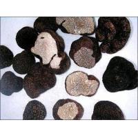 Quality Frozen Truffles for sale