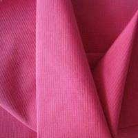 Quality Ripstop nylon fabric, PU coated for sale