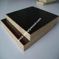 12mm/15mm/18mm Printed Logo Film Faced Plywood one time hot pressed shuttering plywood