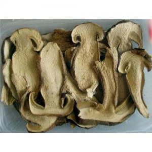 Quality Boletus edulis mushroom for sale