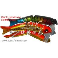 Quality Giant Live Minnow.fishing lures.fishing tackle for sale