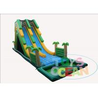 China Coconut Inflatable Water Slide With Big Swimming Pool Summer Party Rental Using on sale