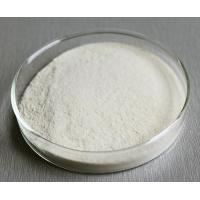 Quality White Food Grade Enzymes Powder Remove Hidden Fluff High Purity Water Soluble for sale
