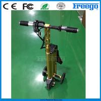 China Fastest Folding Three Wheel Electric Scooter bicycle Motor Bike , Electric Vehicle on sale