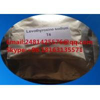 Quality 25416-65-3 Pharmaceutical Raw Materials Levothyroxine Sodium T4 For Weight Loss for sale