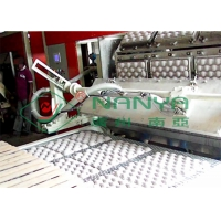 China Recycle Paper Fruit Tray Strawberry Tray Egg Tray Making Machine on sale