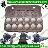 China Coco Paper Pulp Egg Tray Machine and pulp tray machine Factory Price on sale