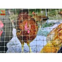 China Polypropylene Plastic Poultry Netting , Garden Plastic Mesh Fencing 30 M / Roll on sale