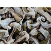 China Factory Price Premium NEW CROP China Dried Boletus Edulis Slices in Different Grades on sale