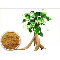 Quality Kudzu Extract 30% Puerarin for sale