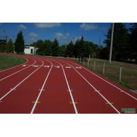 Quality Complex with grain plastic track for sale