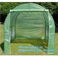 Quality Excellent Material Agriculture Greenhouse/Low Cost Green House,High quality outdoor garden mini portable green house for sale