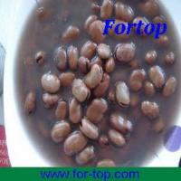 Quality Canned Broad Beans (CBB-003) for sale