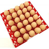 Quality Egg tray with 30 holes PP plastic material and different color QL401 for sale