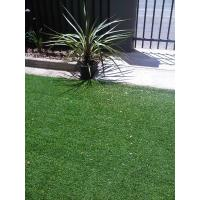 Quality Artificial Grass for Pools for sale
