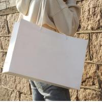 China Reusable Plain White Paper Bags , Custom Made Paper Bags Smooth  Soft Edge on sale