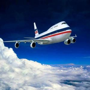 Door To Door DHL Express Courier Cargo Fast Delivery Amazon Fba