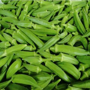 Quality supply the best frozen okra, frozen green okra for sale