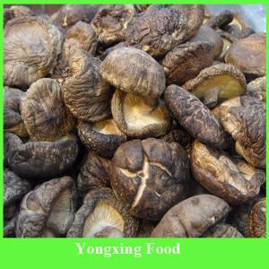 China Whole Shiitake Mushroom,Dried and Sealed Airtight on sale
