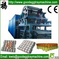 Quality Egg Tray/Fruit Tray/Cup Holder Machine for sale