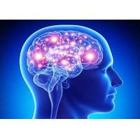 Brain Enhancing Drugs On Sale Brain Enhancing Drugs Rawmaterialdrug