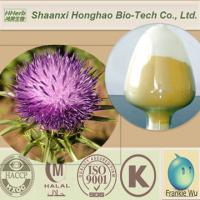 Quality Premium Grade 80% Milk Thistle Extract Silymarin for sale