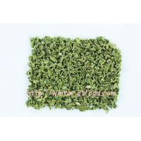 Quality dried celery 001 for sale