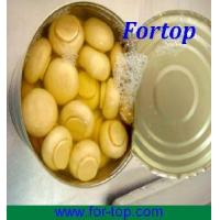 China Canned Champignon Mushroom Whole in Brine on sale