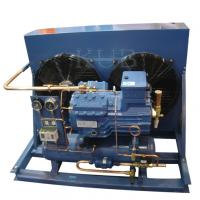 China V2084Y sturdy and compact design Italy frascold condensing unit for cold room on sale
