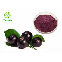 Quality Brazil Acai Berry Powdered Fruit Juice Concentrate Organic High Protein Value for sale