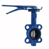Quality Manual Cast Iron Butterfly Valve Wafer Pattern With Flexible Flange End for sale