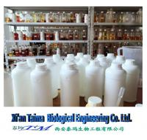 Quality nicotine pure nicotine 99.99% USP grade liquid nicotine 1000mg/ml pure nicotine - Xi'an Taima for sale