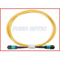Buy 24 X Lanes LC Fiber Optic MPO Trunk Cable OS2 Single Mode Low Insertion at wholesale prices