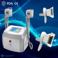 China portable Cryolipolysis  fat freeze Slimming Machine  For Home or spa Use on sale