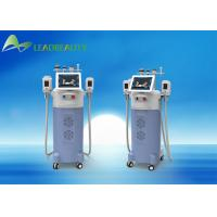 China Cryolipolysis slimming machine/Cryolipolysis machine for home use/Cryolipolysis fat freeze slimming machine on sale