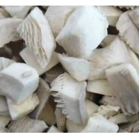 Quality Frozen Mushrooms / IQF Oyster Mushroom/ Shiitake Mushroom for sale