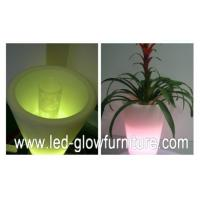 Quality Round / Square / Cube and champagne LED Flower Pots lights , multi - colored led planter pots for sale