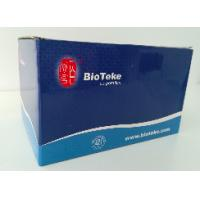Quality Blood DNA Extraction Kit Midi Kit For Rapid Preparation Of Genomic DNA for sale