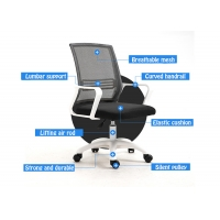 Quality Height Control Upholstered Mesh Ergonomic Skeleton Chair for sale