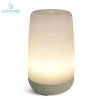 Quality Moisturizing Spray 12W 100ML Essential Oil Diffuser With Led Light for sale