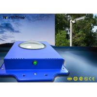 Quality OEM / ODM IP65 Solar LED Garden Lights With Lithium Battery and Epistar LED for sale